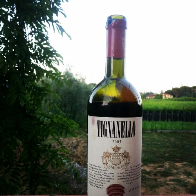 Tignanello 2003